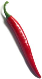 pfefferspray-aus-chilischoten